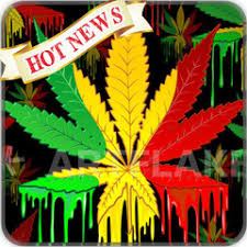 reggae wallpaper apk 1 0