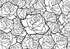 rose flower vector background black and
