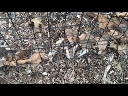 How To Install A Permanent Plastic Fence Tenax Millennium Tutorial Youtube Wooden Fence Fence Decor Fence Design