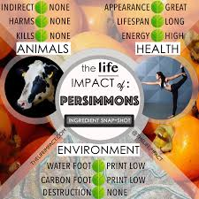 persimmons ing guide for health