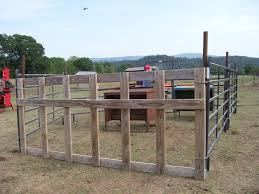 Image Result For Diy Calf Creep Feeder Feeder Cattle Cattle Feeder Cattle