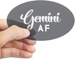 Amazon Com Cafepress Gemini Af Oval Bumper Sticker Euro Oval Car Decal Home Kitchen
