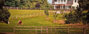 What S The Difference Between Rails In And Rails Out On A Wood Fence And What S Best For You Buzz Custom Fence