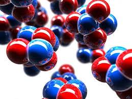 Las biomoléculas.