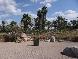rock sculpture park and cactus garden