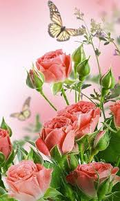 flowers live wallpaper free android