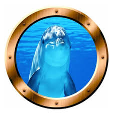 Vwaq Sea Turtle Porthole 3d Sticker Beach Style Wall Decals By Vwaq Vinyl Wall Art Quotes And Prints