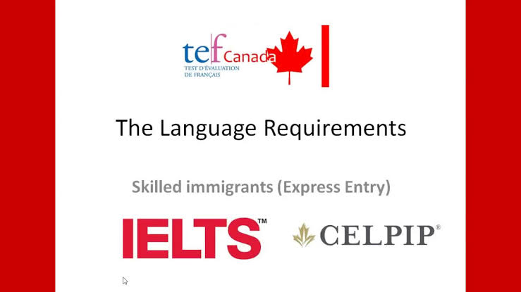 "Résultat de recherche d'images pour ""language requirements for express entry"""""