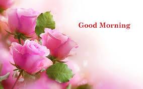 ورد صباح الخير صور زهور صباحية مع عبارة صباح الخير عالم ستات