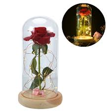 beast red rose in a glass dome