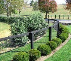 Good Cheap Fence Options For A Farm To Keep Dogs In Google Search Backyard Fences Fence Landscaping Fence Options