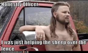 Honestly Officer I Was Just Helping The Sheep Over The Fence Memebase Funny Memes