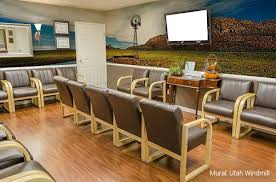 Wall Murals For Doctors Medical Offices By Magic Murals