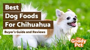 dog food recipes for chihuahuas لم يسبق