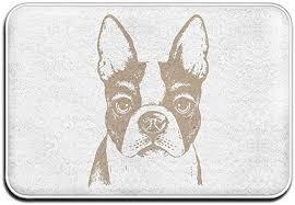 spxubz boston terrier french bulldog
