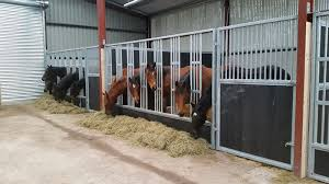Equine Feeding Barriers Redweld Stables