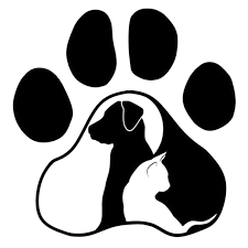 2020 15 14 6cm Dog Cat Love Animal Sticker Vinyl Decal Warm And Romantic Car Accessories Motorcycle Helmet Car Styling From Xymy797 4 63 Dhgate Com