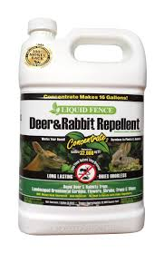 Deer And Rabbit Repellent Concentrate 1 Gallon Seed World