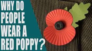 Why do people wear a red poppy? What is Poppy Day? Remembrance Day ...