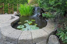21 Backyard Pond Ideas For Inspiration Trees Com