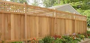 High Garden Fencing Ideas Google Search Privacy Fence Landscaping Backyard Fences Fence Design