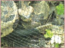 How It Works Snake Fence Systems