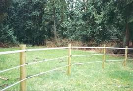 Poly Tape Horse Fence