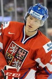 Dmitrij Jaskin To Make Debut with the St. Louis Blues | Hot hockey players,  St louis blues, Louis
