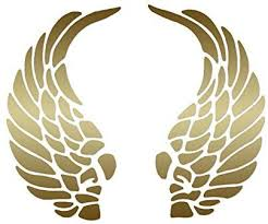 Amazon Com Curled Angel Wings Vinyl Decal Sticker 7 X 5 75 Gold Home Improvement