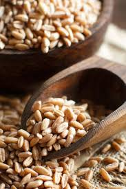 spelt nutrition health benefits and