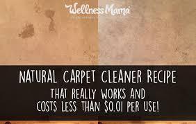 homemade carpet cleaner recipe