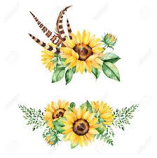 Coleccion Floral Hermosa Con Los Girasoles Hojas Ramas Hojas De