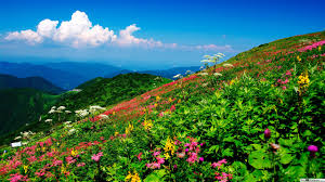 المناظر الطبيعية الجميلة تنزيل خلفية Hd