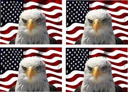 Bald Eagle Vinyl Decal Sticker Bumper Window Wall America Usa Pride Patriotic