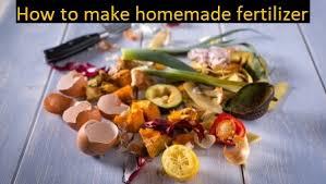homemade fertilizer top 5 best