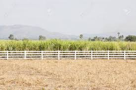 White Wash Fence On A Vast Land Stock Photo Picture And Royalty Free Image Image 22074555