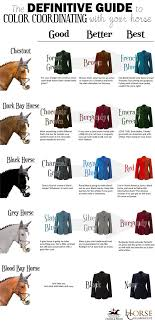 color coordinating with your horse