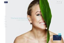 spa beauty salon wordpress themes
