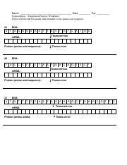 transcription translation practice