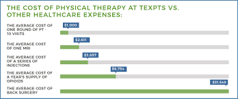 The Cost of Physical Therapy - Texas ...
