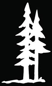 Amazon Com Pine Trees Forest Mountain Car Truck Window Bumper Vinyl Graphic Decal Sticker 6 Inch 15 Cm Tall Gloss White Color Automotive