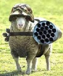 Gun Nuts Say That The Solution To Wolves Is To Give Sheep Guns Badtux The Snarky Penguin