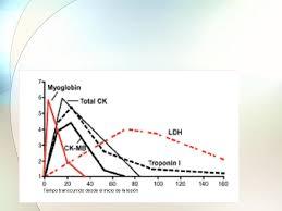 resumen enzimas química biológica