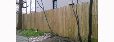 Chain Link Fence Privacy Bamboo Toronto Store