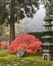 portland japanese garden sports