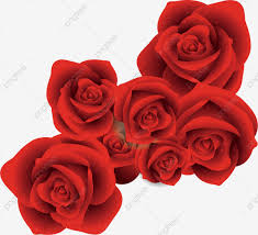 Red Rose Png Images Vector And Psd Files Free Download On Pngtree