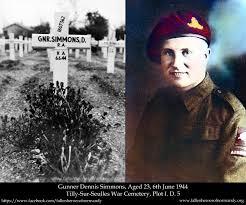 Fallen Heroes of Normandy   Detail