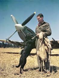 "John Edgar ""Johnnie"" Johnson (9 March 1915 – 30 January 2001 ..."