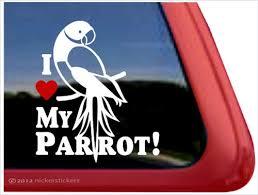 Ringneck Parrot Decals Stickers Nickerstickers