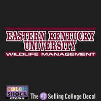 Auto Accessories School Spirit Accessories Gifts Accessories Barnes Noble At Eku